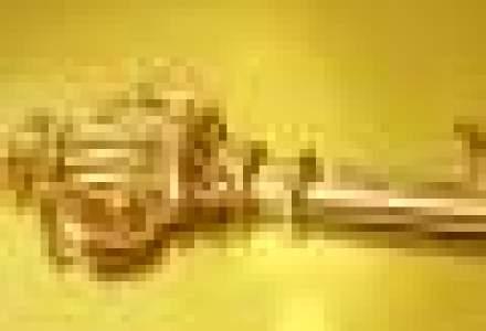 Pretul aurului creste de 10 sedinte