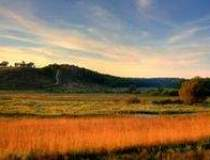 Agricultura, eterna speranta...