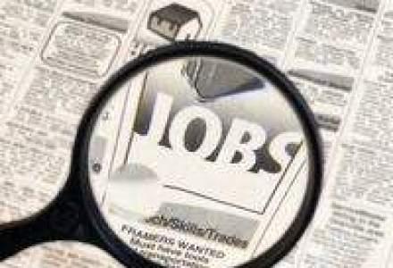 Numarul angajatilor din asigurari a scazut cu 7% in 2010