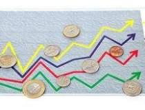 Indicii BVB, la valori...