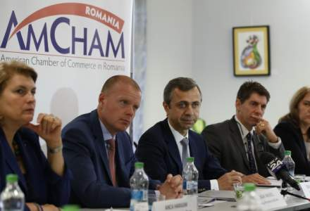 AmCham respinge acuzatiile ca multinationalele s-ar fi implicat in sustinerea protestelor