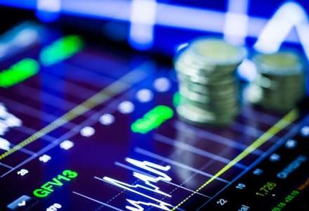 Guvernul face primul pas pentru infiintarea Fondului Suveran de Investitii
