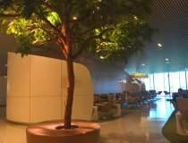 Aeroportul ca destinatie: cum...