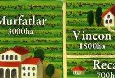 Harta celor mai importanti producatori de vinuri din Romania [INFOGRAFIC]