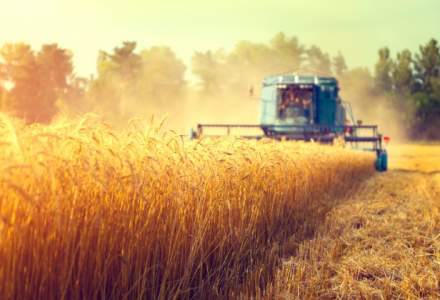 Ministerul Agriculturii: 155 de cetateni straini detin terenuri agricole in Romania si au solicitat fonduri prin APIA