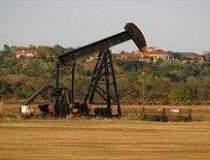 Compania petroliera NIS vrea...