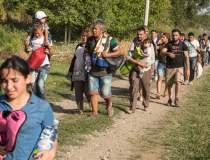 17 migranti din Irak si Siria...