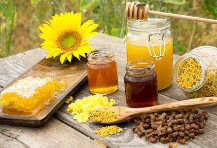 Afacere cu produse apicole: Vanzari de peste 10 milioane de lei