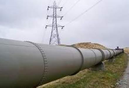 Amanari in lant la oferta Transelectrica: Inca o saptamna pentru stabilirea intermediarului