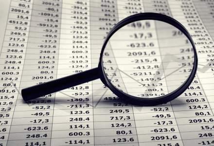 Doar 3% dintre companii sustin economia romaneasca