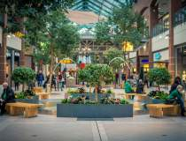 Provocarile unui mall: cum...