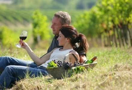 Domeniile Panciu, despre turismul viticol in Romania: Suntem cu minimum 20 de ani in spate fata de Republica Moldova