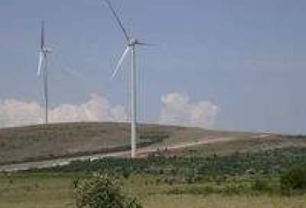 Enel Green Power pune in functiune un parc eolian de 70 MW in Tulcea