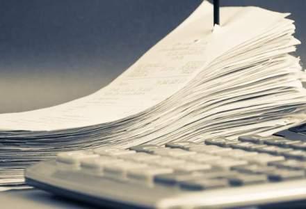 Ruxandra Jianu, consultant fiscal: Nu am vazut rambursari de TVA care sa se incadreze in termenul legal de 45 de zile