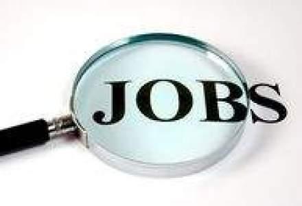 Unde poti sa te angajezi in 2012