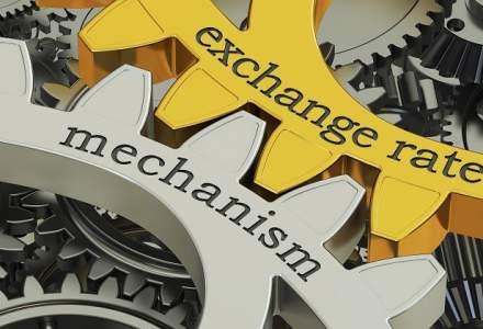 Cine stabileste in realitate cursul de schimb valutar?