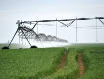 Agricover Credit IFN ajunge...
