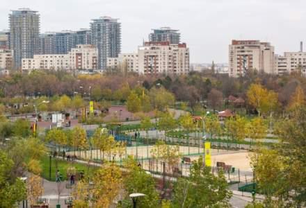 """Primaria Capitalei sustine ca va continua dezinsectia in principalele zone publice, fiind aplicate tratamente si pentru """"Tigrul platanului"""""""