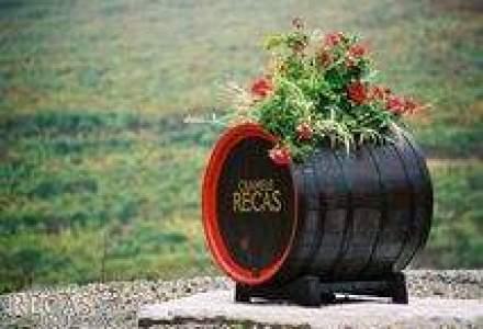 Cramele Recas: Vom exporta 2 milioane de sticle de vin