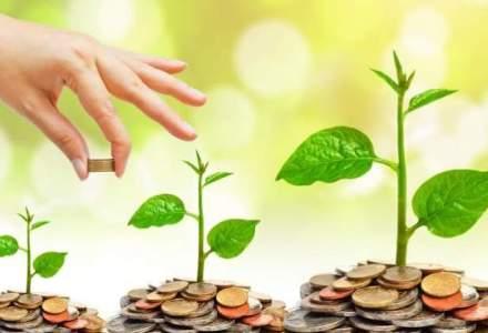Investitii pe piata forex