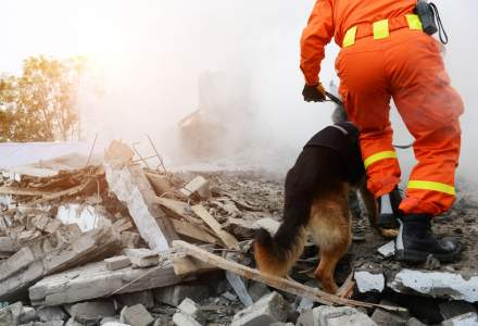 VIDEO Instructiuni in caz de de cutremur sau inundatii. Unde trebuie sa te adapostesti?