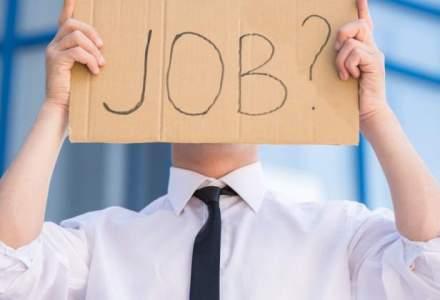 Peste 24.400 de locuri de munca vacante la nivel national