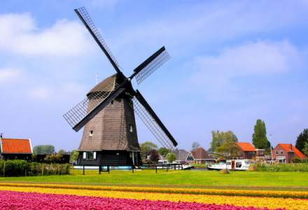 Olandezii vor sa interzica vanzarea de masini conventionale noi pana in 2030