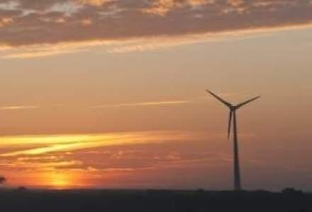Emanuel Muntmark investeste 250 mil. euro intr-un parc eolian in judetul Constanta
