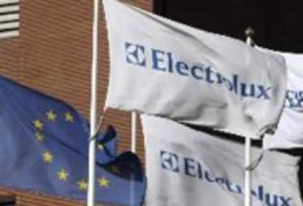 Greva de avertisment la fabrica Electrolux din Satu Mare
