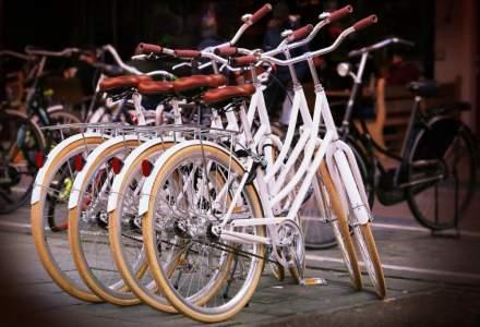 Cati romani se deplaseaza cu bicicleta la locul de munca