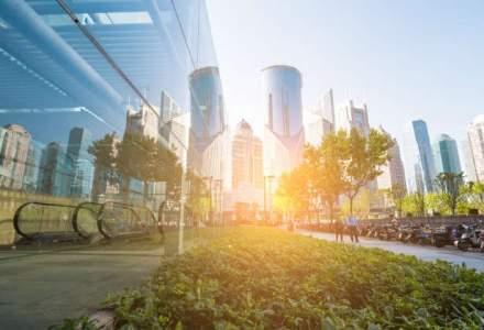 """5 masuri usor de implementat pentru o afacere """"verde"""""""