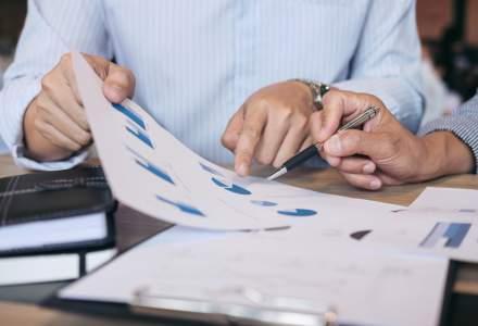 Alegerea corecta si intelegerea pietei pentru afacerea ta