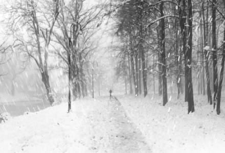 ANM: Temperaturi in limite, dar precipitatii peste limita in aceasta iarna