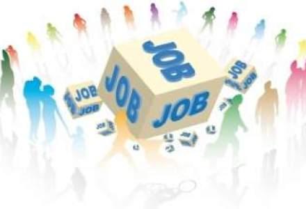7 sfaturi prin care iti poti asigura un loc de munca in acest an