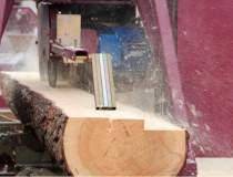 Romania a exportat lemn si...