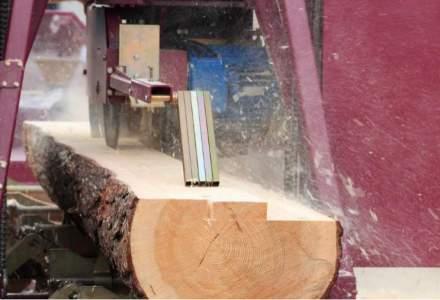 Romania a exportat lemn si pluta in valoare de 394,4 milioane euro, in primele opt luni