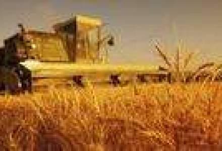 Agricultura ecologica avanseaza rapid prin terenurile patriei