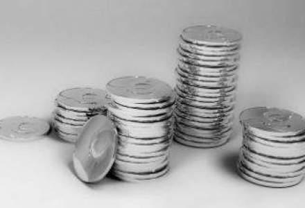 Afacerile Boromir au crescut cu 17%