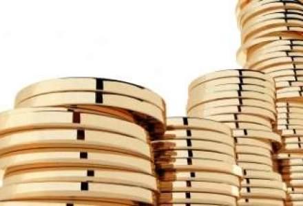 Statul poata lua 1 mld.euro din vanzarea de participatii la companii din energie