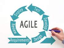 Management in Scaled Agile...