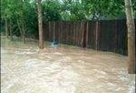 Generali Asigurari a platit in Q1 despagubiri de 250.000 lei in urma inundatiilor