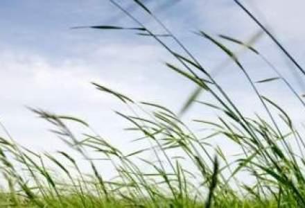 Afaceri in crestere cu aproape 50% pentru grupul Agricover