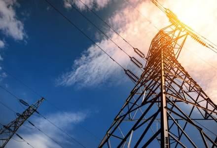 Statul vrea sa faca legea la Electrica si cere demiterea board-ului dupa nici 6 luni de mandat. Factura: 321.000 euro brut