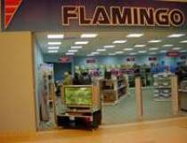 Flamingo International...