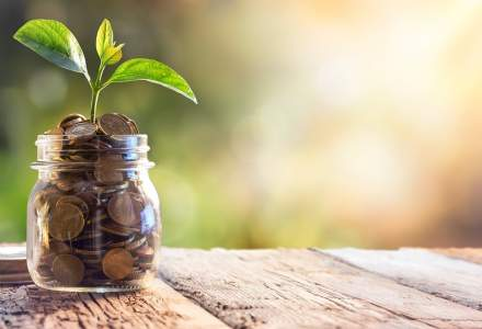 NN lanseaza trei noi fonduri de investitii si vrea sa atraga 2 mld. lei de la romanii nemultumiti de dobanzile bancare