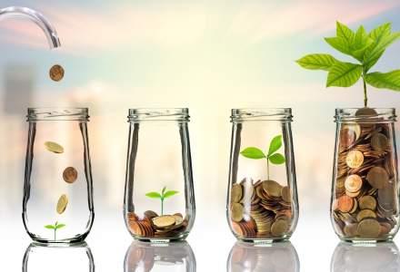 """Cinci investitii """"la pamant"""" in 2016, care ar putea sa revina in 2017"""