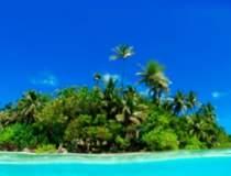 Cadouri exotice: Insule de...