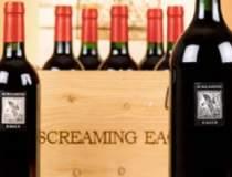 Sticle de vin exagerat de scumpe
