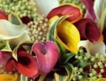 De 1 si 8 martie, romancele...