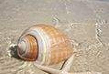 Destinatii de top: cele mai seducatoare plaje